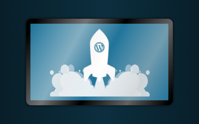 7 Reasons to Use WordPress Web Design for your Business Site